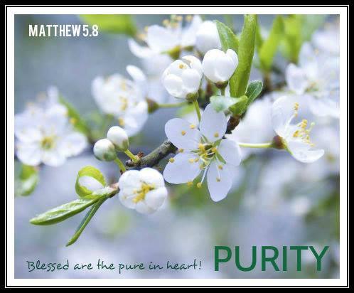 MATTHEW 5.8