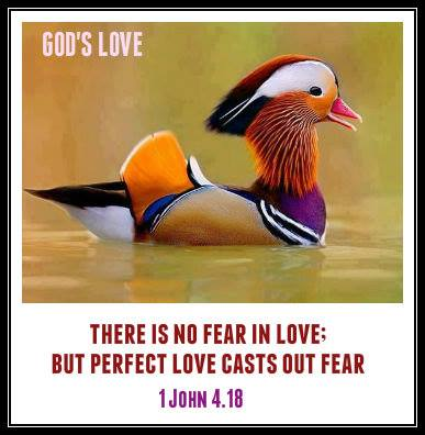 1 John 4.18